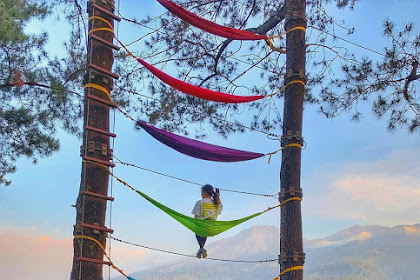 Harga Tiket Masuk Tretes Treetop Adventure Park Pasuruan