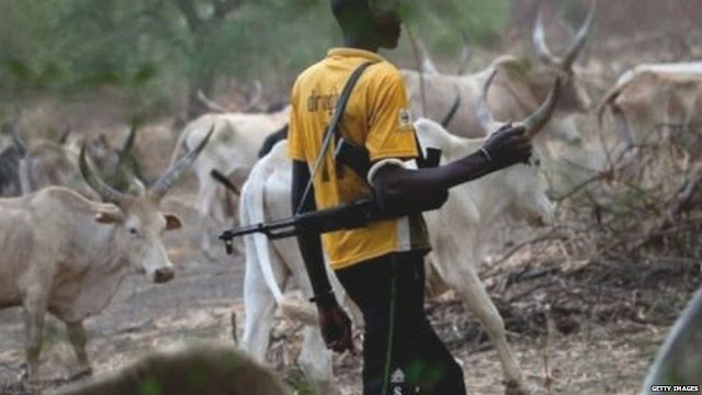 Suspected Fulani Herdsmen assaulted a medical staff  in Ogoja