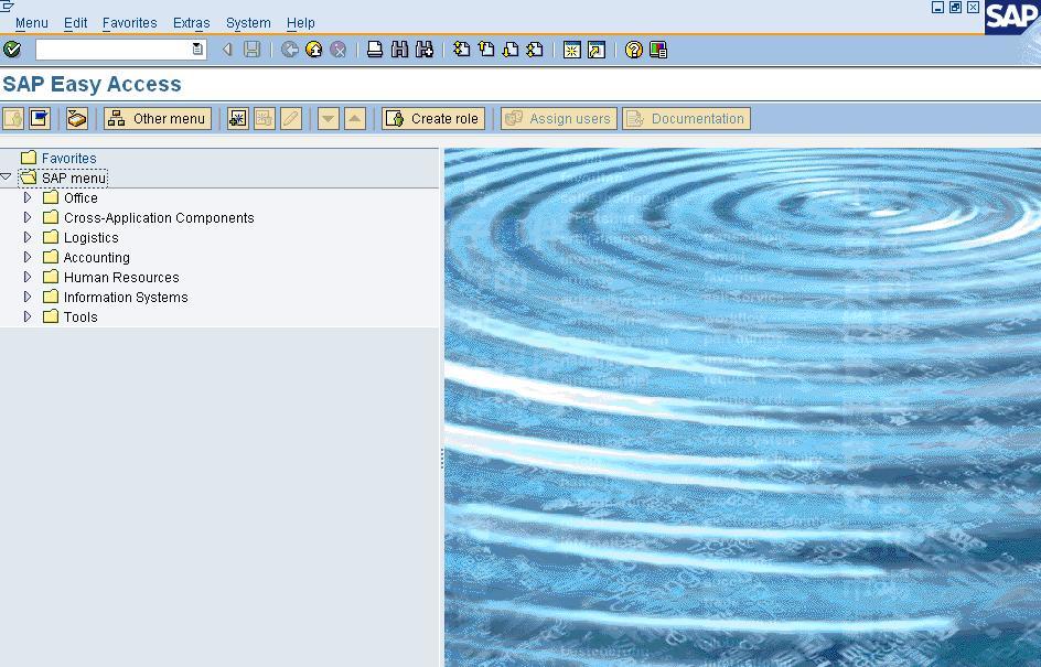 How To Login In SAP SAP User Manual