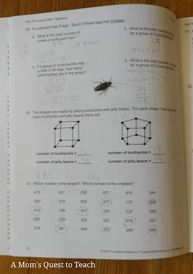 Dare to Compare Math: Beginning workbook page