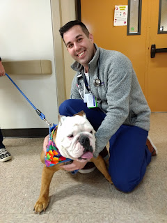 Ensign Trevor Elam, then a 3rd year medical student at the Uniformed Services University, poses with a therapy dog on the wards.  (Navy Medicine photo)