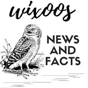 WixOos | News and Facts