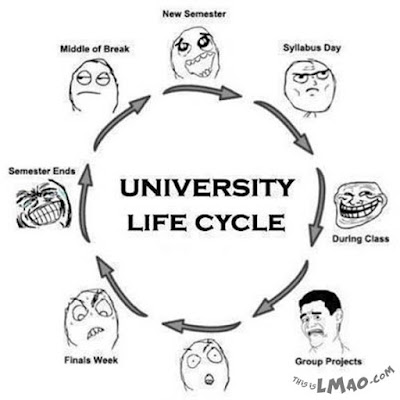 Quotes About University Life: university life cycle