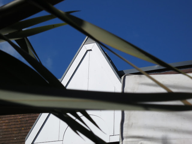 Sharp leaves cut across a white pointed roof in front of deep blue sky.