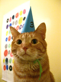 happy birthday amanda cat