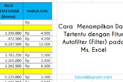 Cara  Menampilkan Data Tertentu dengan Fitur Autofilter (Filter) pada Ms. Excel