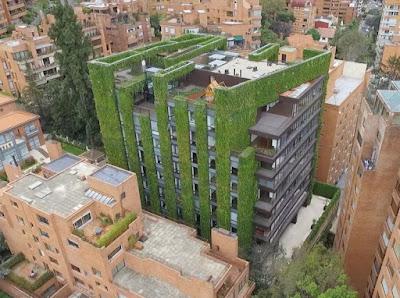 Căn hộ 11 tầng được 'bảo hộ' bởi cây xanh 5