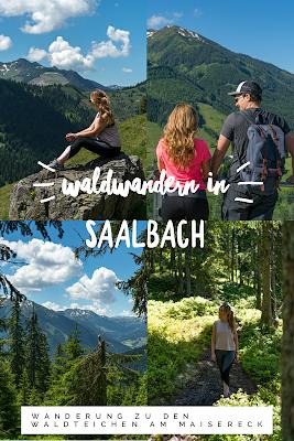 Waldwandern in Saalbach | Wanderung zu den Waldteichen am Maisereck | Saalbach - Maisalm - Wirtsalm - Waldteiche - Spielberghaus - Saalbach | Wandern-SalzburgerLand 20