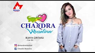 Chandra Rosalina - Buaya Cintaku