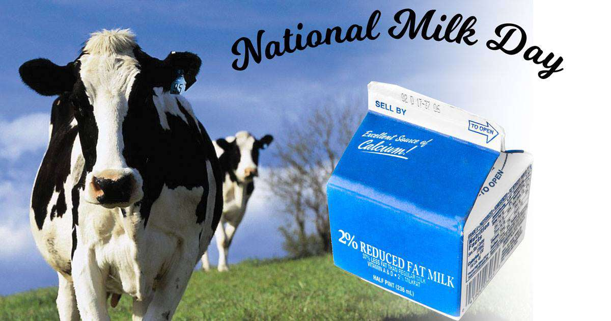 National Milk Day Wishes Unique Image