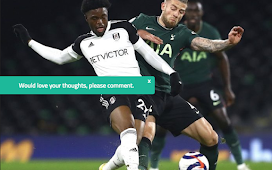 Ex-Chelsea Star Reacts After VAR's Decision Disallowed Maja Goal In Fulham's Defeat To Spurs