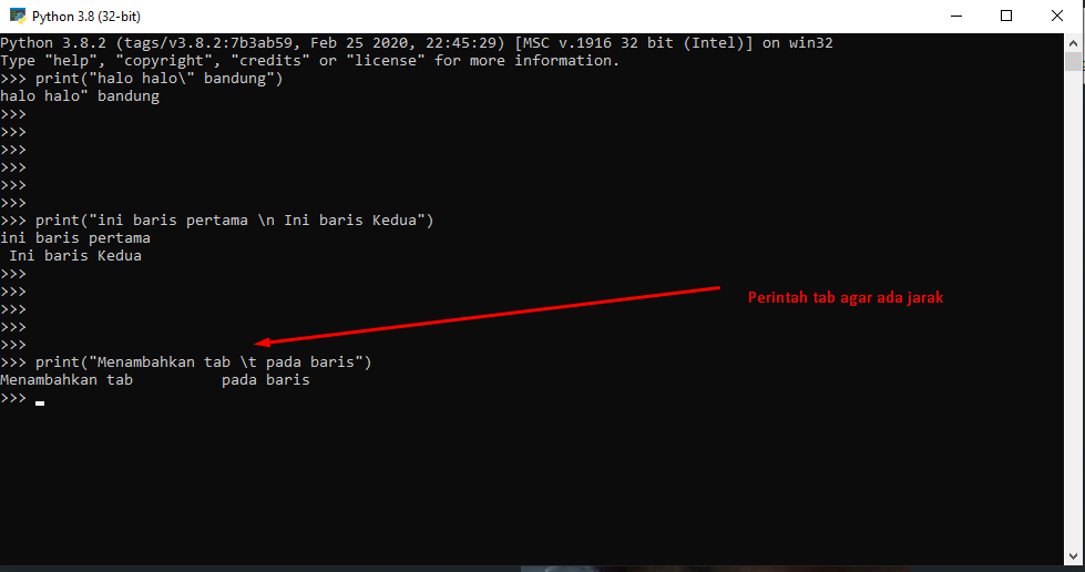 Metode String Concatination dan Escaping pada Python