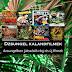 Dzsungel kalandfilmek, dzsungelben játszódó régi és új