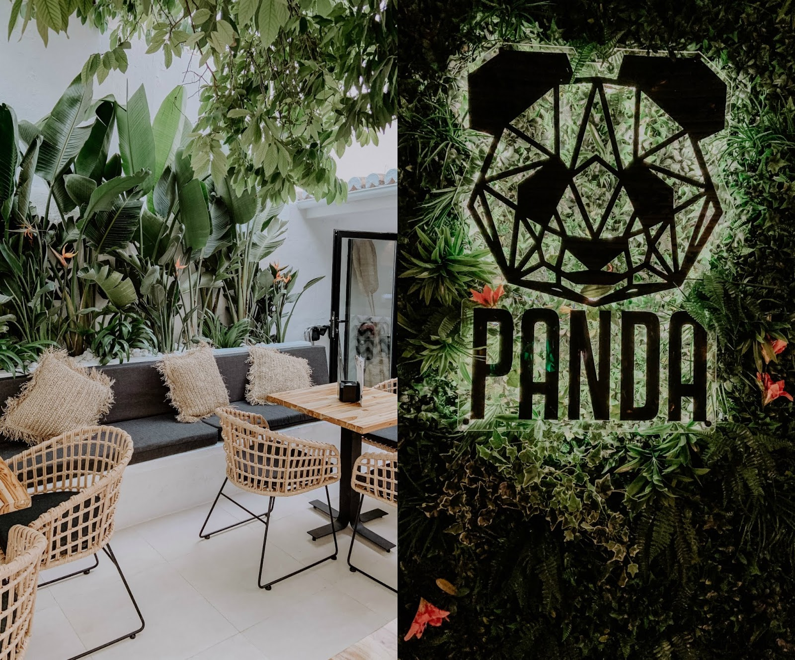 Panda bar Fuengirola