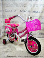 12 Inch Flord Mini Kids Bike