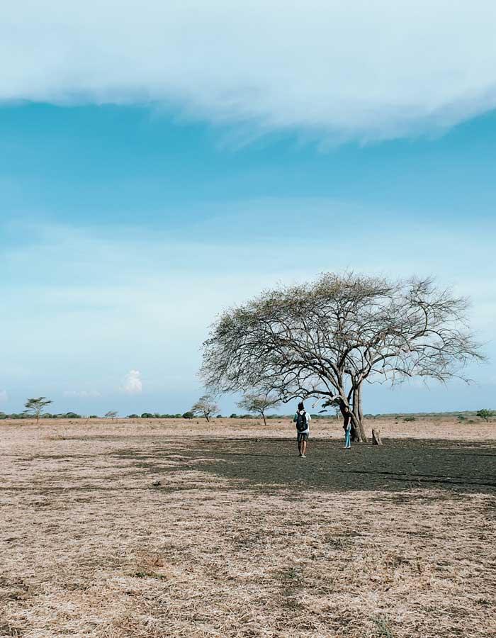Rute Lokasi Taman Nasional Baluran