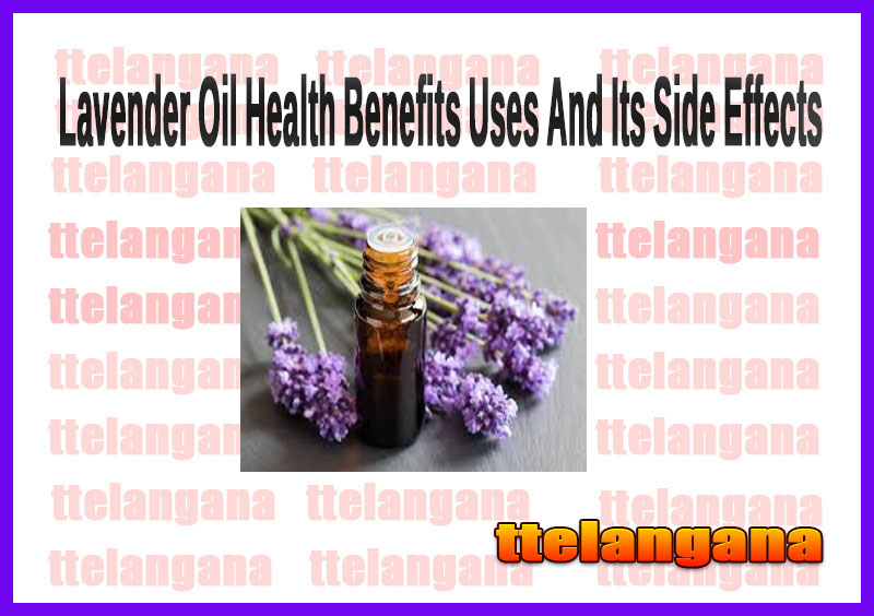 Lavender Oil Health Benefits Uses And Its Side Effects