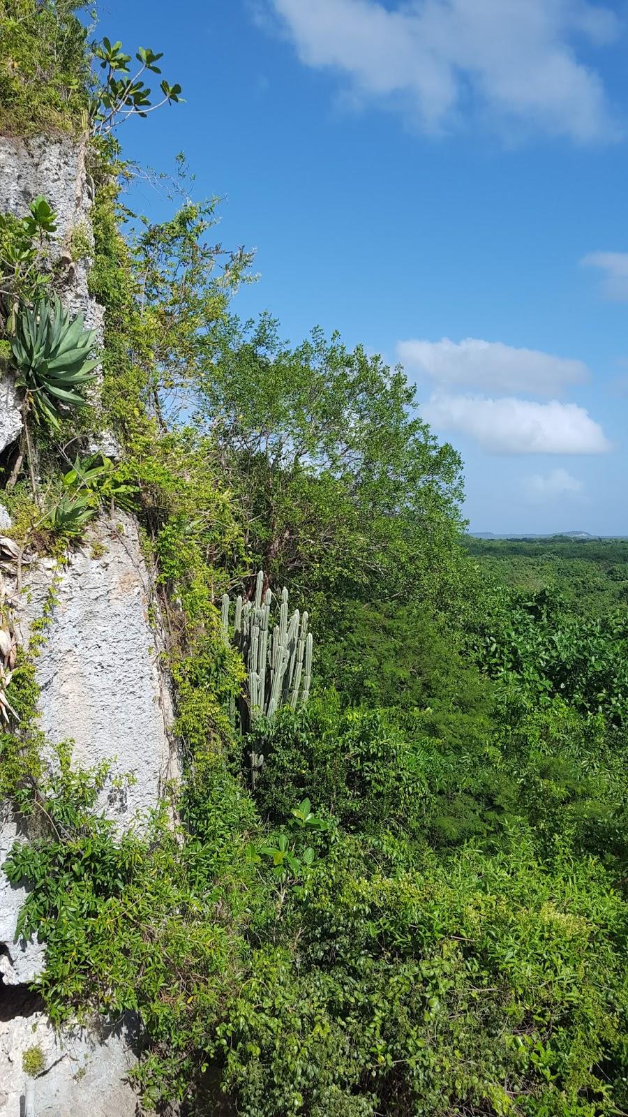 Dominikana Cap Cana