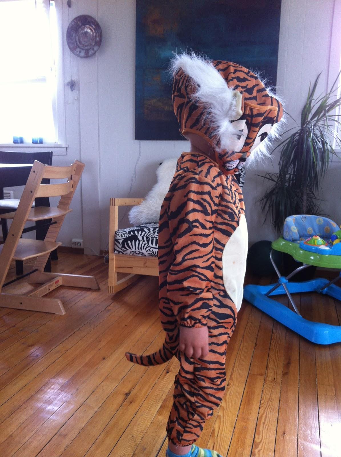 runde solbriller tiger