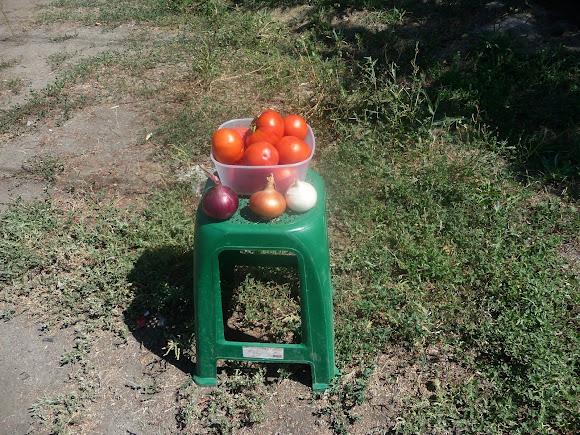 Васильківка. Район Низ. Вулиця Соборна. Продаються овочі