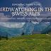 Birdwatching in the Swiss Alps