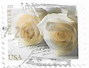 Selo Rosas Brancas