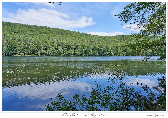 Tully Trail: ... and Long Pond...