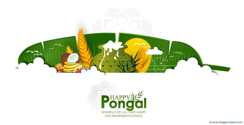 Happy pongal fb cover pics update 2021