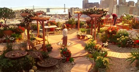 El jardín diseñado por David para Elizabeth en Ojalá fuera cierto - Cine de Escritor