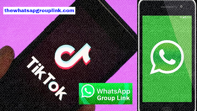 Join Best 201+ TikTok Whatsapp Group Links 2020