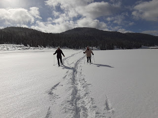 2 ladies cross country skiing across a snowy field.