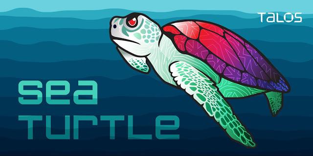 Sea Turtle Keeps on Swimming