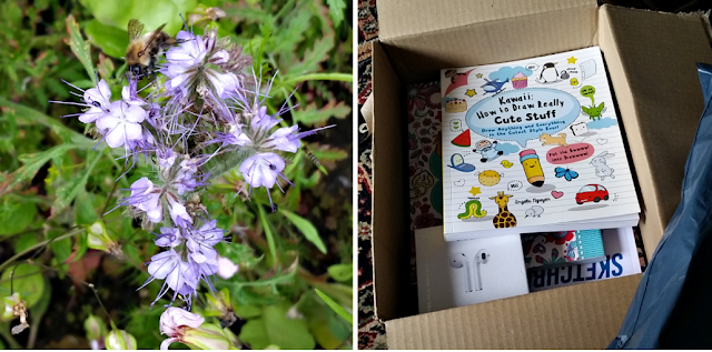 A bee on a flower and a box of books for my youngest girls birthday next month