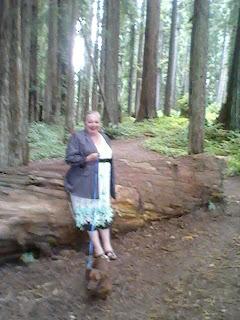 Living in Humboldt County-Saundra Allman, Realtor: 2011