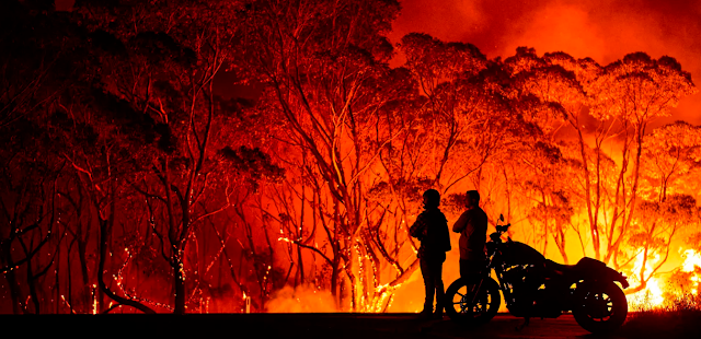 australia forest fire in 2020,australia fire