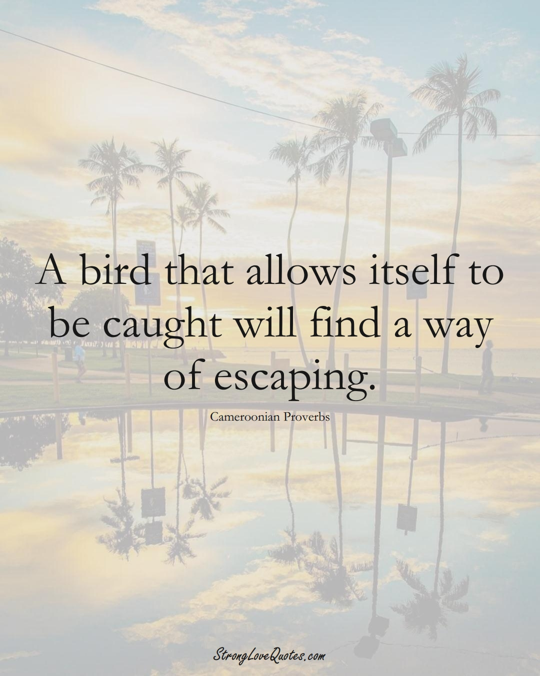 A bird that allows itself to be caught will find a way of escaping. (Cameroonian Sayings);  #AfricanSayings