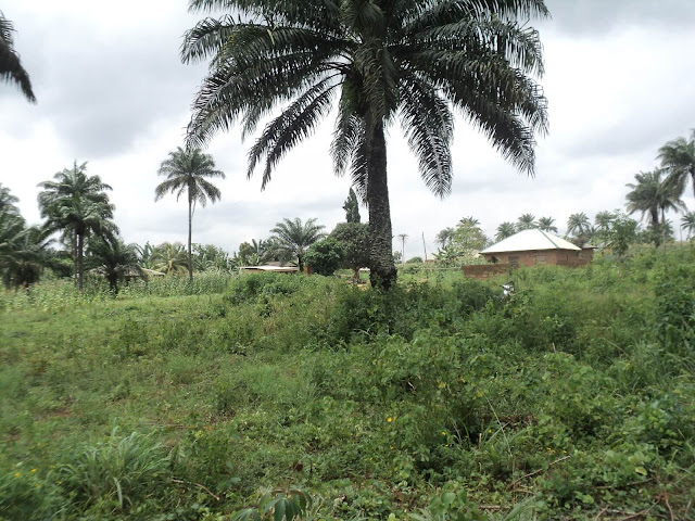 Land at Ibekan Community First View
