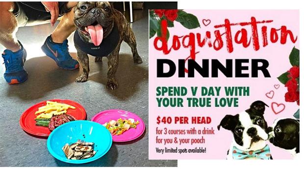 restaurante con menú para perros