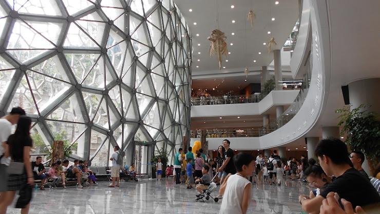 上海自然博物館内部2
