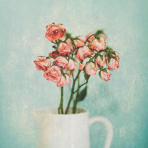 "CoffeeShop ""Hinterland"" Fine Art Texture/Paper Set!"