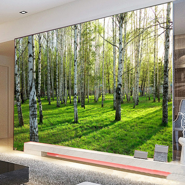 Nature Wall Murals Forest Birch Tree 3d Photo Wallpaper Landscape