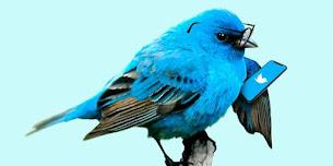 Twitter'ı Alternatif Haber Sitesi Olarak Kullanmak
