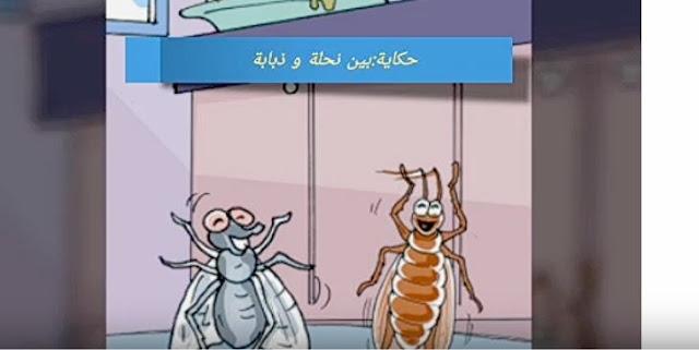 حكاية بين نحلة و ذبابة المستوى الأول مرجع في مفيد