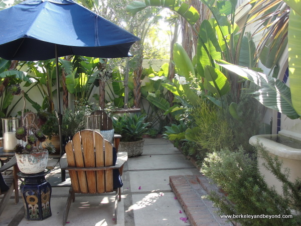 lush patio off shop at Malibu Country Mart in Malibu, California