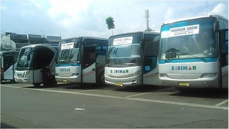 Penampakan Bus Budiman di Terminal Cicaheum, Bandung