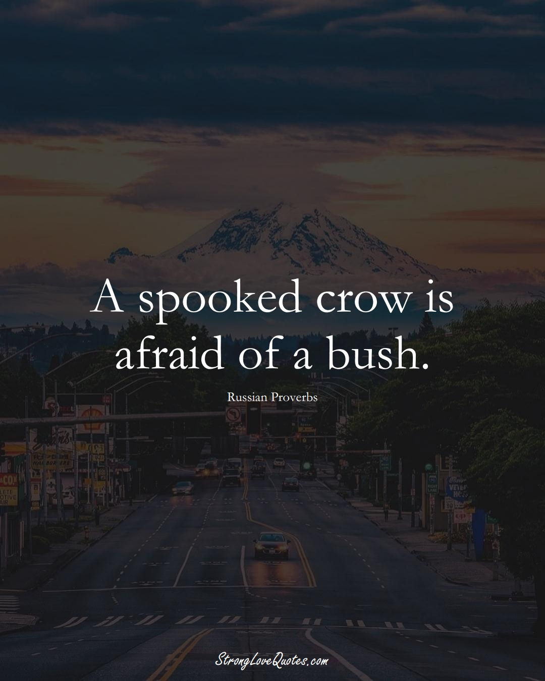 A spooked crow is afraid of a bush. (Russian Sayings);  #AsianSayings