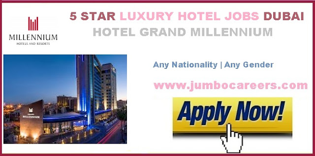 Hotel Driver jobs in Dubai. 5 Star hotel accountant jobs in Dubai. 5 Star hotel careers Dubai.