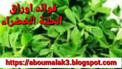 الفوائد الصحية لاوراق الحلبة الخضراء
