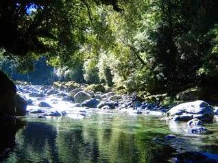 untuk sahabat angler yang berdomisili sekitaran tersebut silahkan di simak informasinya yah Spot Wild Fishing Sekitar Jabodetabek