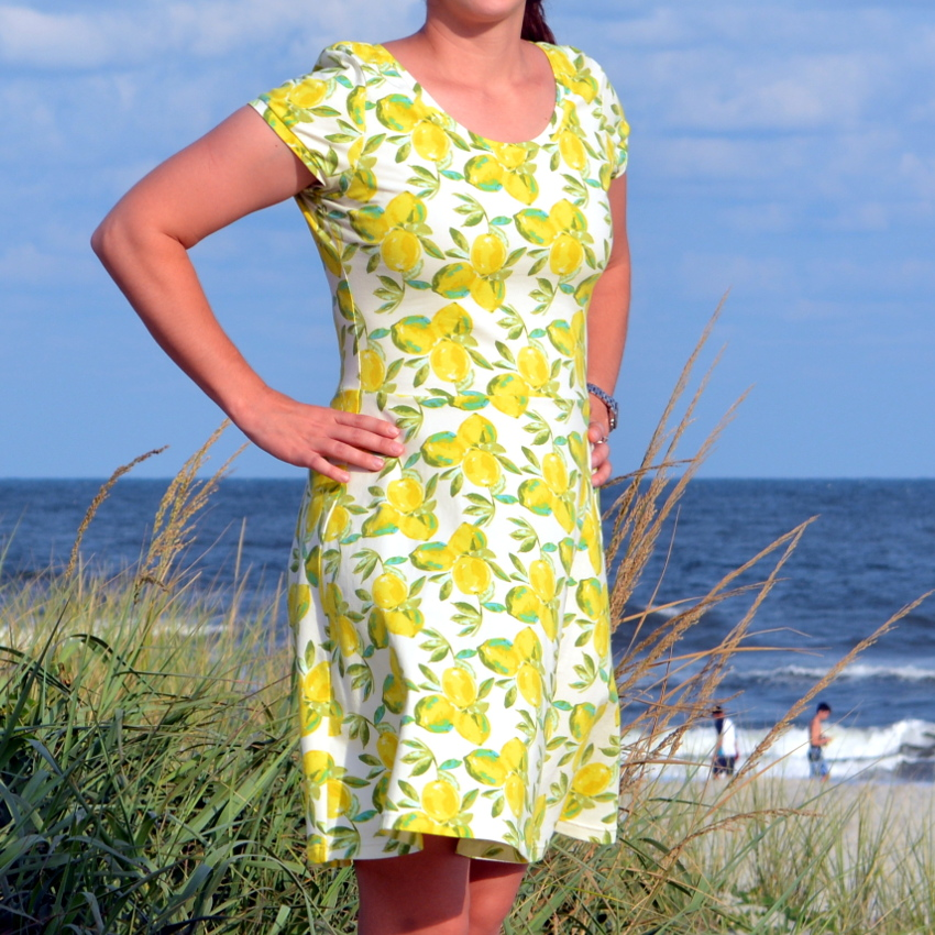 cozy birdhouse | lemon lady skater dress